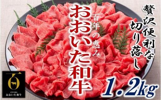 おおいた和牛/贅沢切り落し1.2kg