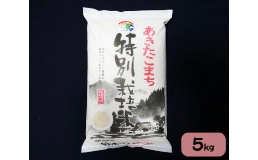 No.658 あきたこまち5kg秋田県特別栽培米 あべ倶楽部 / お米 精米 秋田県