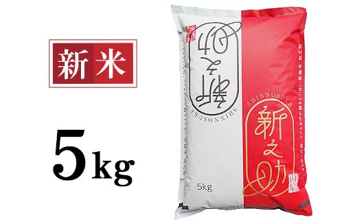 48-S51新潟県長岡産「新之助」5kg