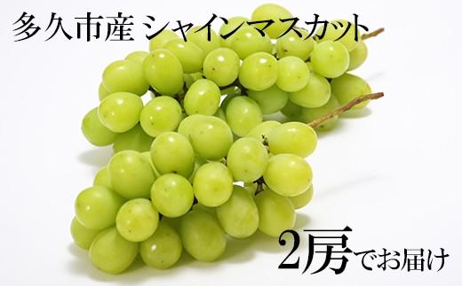 b-79  減農薬 武冨さんちのシャインマスカット2房セット【予約受付】
