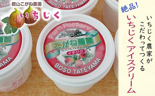 【010-081】いちじくアイスクリーム6個(館山こがね農園産)
