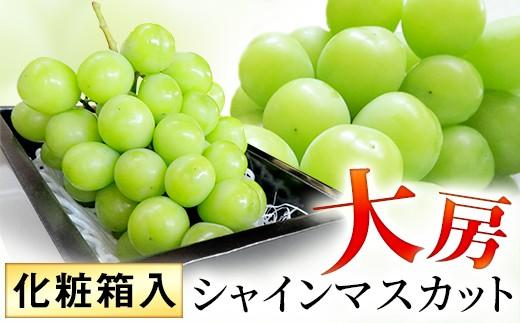 【厳選】大房シャインマスカット(化粧箱入り)