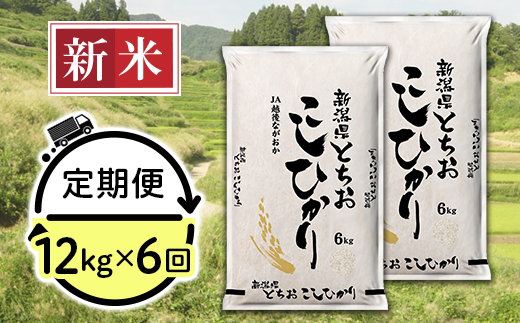 75-T126【6ヶ月連続お届け】新潟県長岡産コシヒカリ(栃尾地域)12kg