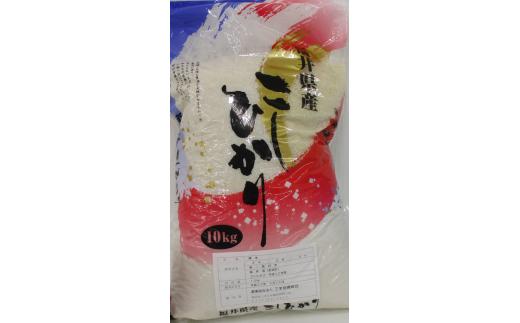 新米 令和2年産 福井県若狭町コシヒカリ(1等米)10kg (10月から発送)