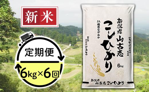 【6ヶ月連続お届け】新潟県長岡産コシヒカリ山古志地域棚田米6kg