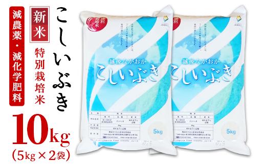 新潟県長岡産こしいぶき10kg(5kg×2袋)