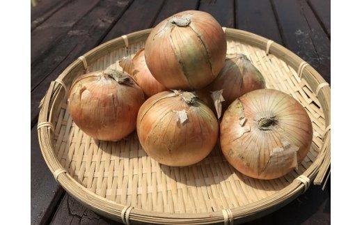 栗山町産たまねぎ(2kg) ※表示されている個数と異なる場合があります。