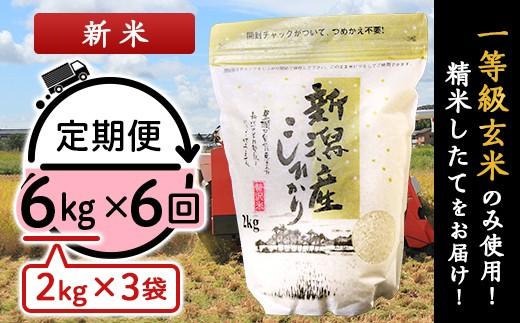 31-04【6ヶ月連続お届け】新潟県産コシヒカリ6kg(2kg×3袋)