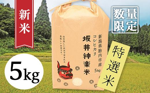30-051【数量限定】新潟県産コシヒカリ5kg(坂井神楽米)