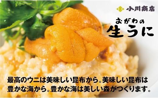 最高のウニは小川商店乙部工場から直送!! 塩水ウニ(100g×3パック)