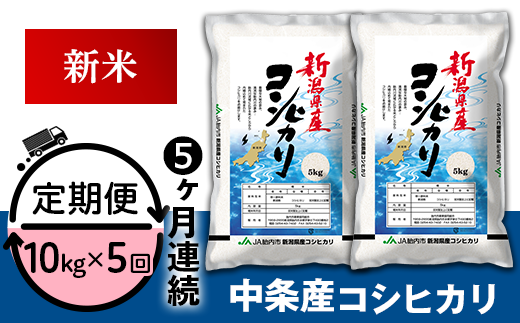 23-A3【5ヶ月連続お届け】新潟県中条産コシヒカリ10kg(5kg×2袋)