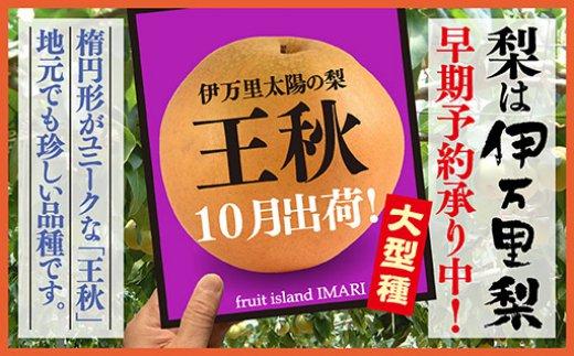B117初物!伊万里梨10月出荷「王秋」(5kg)