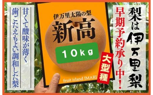 B166伊万里梨「新高」(約5kg×2箱)