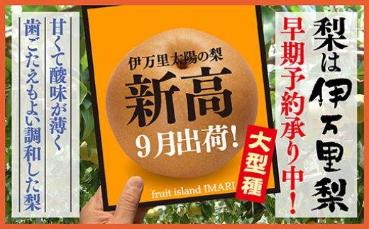 B162伊万里梨「新高」(5kg)大型種