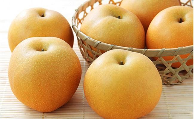 シャインマスカットもいいですが、梨も絶品です。