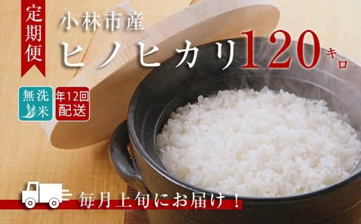 【定期便:年12回】小林産ひのひかり無洗米<10kg×12回> SNB12