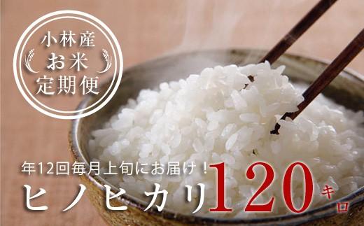 【定期便:全12回】小林産ひのひかり<10kg×12回> SNB10