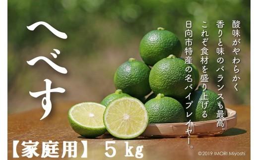 12(30)-02 訳ありへべすふぞろい果実5kg【家庭用】