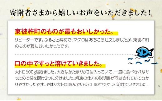 BAK013 長崎県産 本マグロ 大トロ600g 【大村湾漁業協同組合】-2