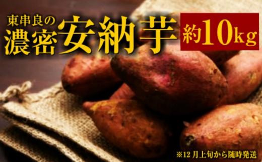 【13544】東串良の濃密安納芋 10kg