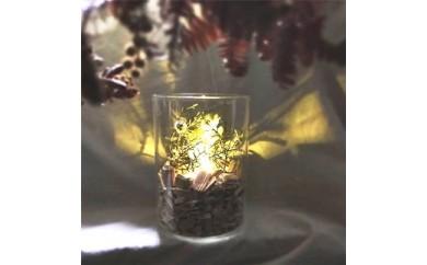 アロマ香る森のランプ - aroma lamp bottle