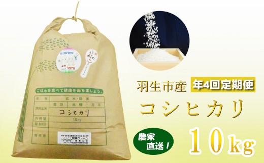 【令和元年産米】農家直送 埼玉県羽生市産コシヒカリ 年4回定期便