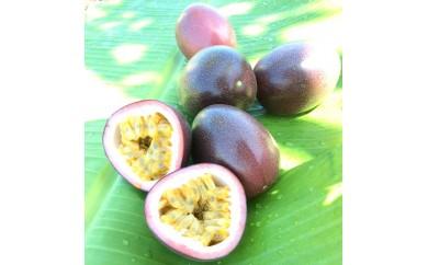【2020年先行予約分】県認証取得 奄美のパッションフルーツ家庭用2kg