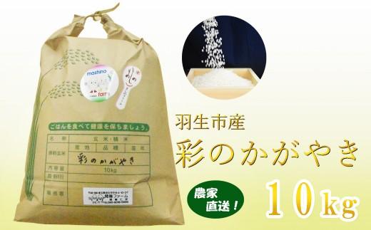 【令和元年産米】農家直送 埼玉県推奨米 彩のかがやき 10kg