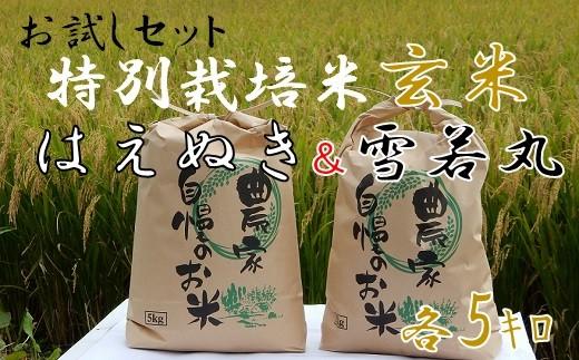 ファミリー農園吉永の【元年産・玄米】特別栽培米お試しセット(はえぬき&雪若丸)