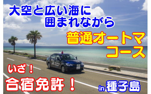 種子島自動車学校免許プラン 合宿オートマコース 26,700pt NFN165