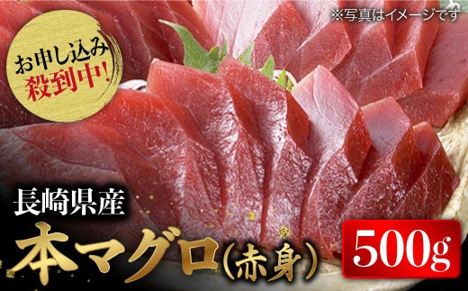 BAK011 【増量して再登場!】長崎県産 本マグロ 赤身 500g 【大村湾漁業協同組合】