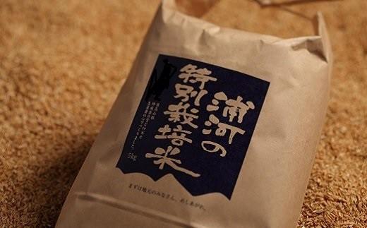 [28-551]浦河の特別栽培米「きたくりん」玄米(5kg×2袋)