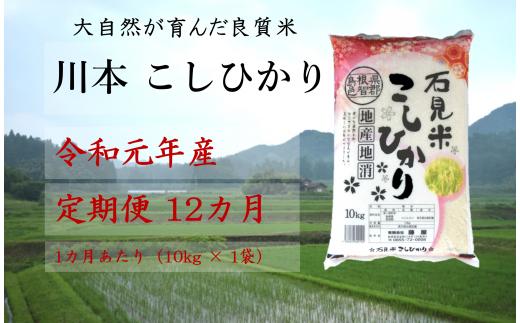 150132【令和元年新米/お米定期便/12ヵ月】しまね川本 コシヒカリ 10kg (計120kg)