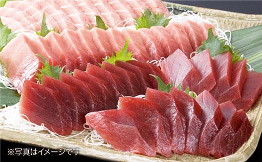 BAK011 長崎県産 本マグロ 赤身 500g 【大村湾漁業協同組合】-2