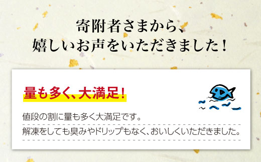 BAK011 長崎県産 本マグロ 赤身 500g 【大村湾漁業協同組合】-3