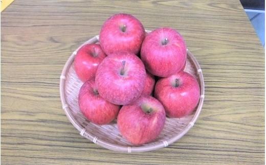 0096-206 りんご(サンふじ)5kg 14~18玉