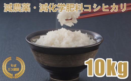 A636 減農薬・減化学肥料コシヒカリ白米10kg(令和元年産)
