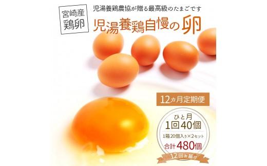 <児湯養鶏自慢の卵 計480個(40個×12回)>12ヶ月定期便【E19】