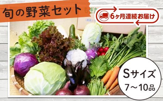 J0436旬の野菜セットSサイズ【6か月連続お届け定期便】(まごころ・ふれあい農園)