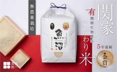 5年連続金賞 無農薬栽培米5kg 最上級 関家のこだわり米