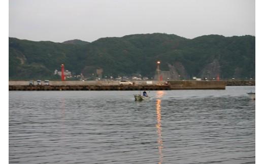 漁師の浅田さんだからこそ、出せる自慢の逸品です。