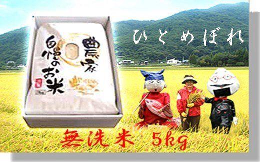 減農薬栽培 岩手花巻産ひとめぼれ無洗米 5㎏(令和元年産新米) 【510】
