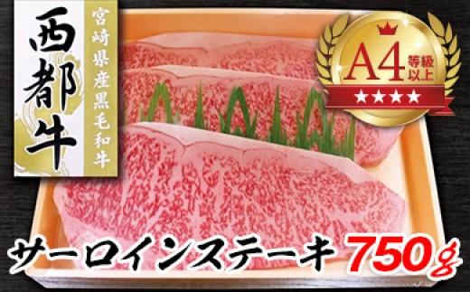 宮崎和牛【西都牛】 サーロインステーキ 750g (250g×3枚)<5-9>