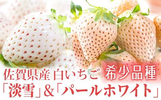 KN19008 〖佐賀県産〗白いちごの食べ比べ♪