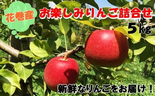 花巻産訳ありお楽しみりんご詰め合わせ 5kg <予約受付> 【508】