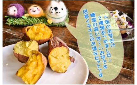 476-1 お芋専門店イチオシの焼き芋2種詰合せ3㎏