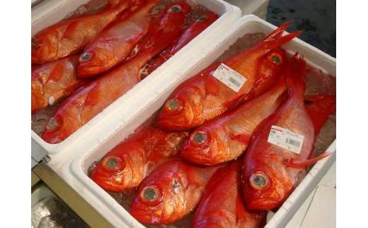 千葉ブランド水産物にも認定されている「釣り金目鯛」