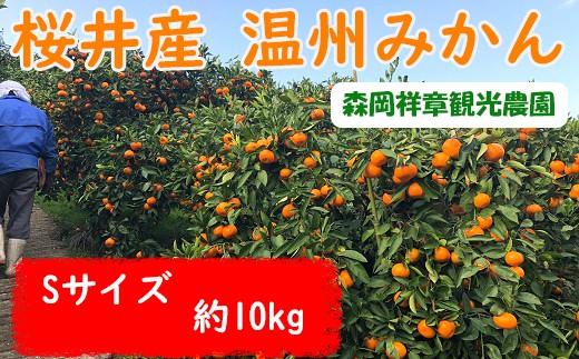 M-AC14.【先行予約】 桜井産 温州みかん Sサイズ 10kg