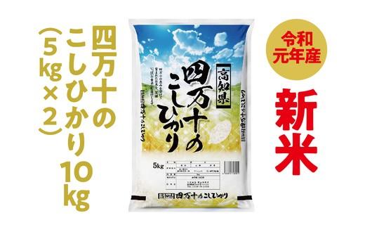 19-532C.9月限定【新米】四万十のこしひかり10㎏(5㎏×2)