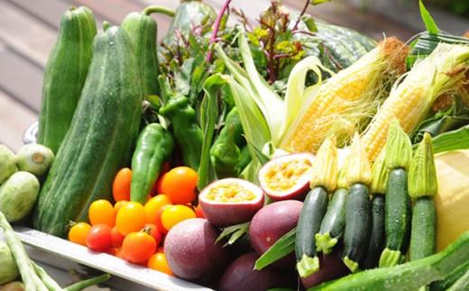 地元野菜をふんだんに使っています。
